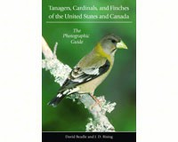Tanagers, Cardinals, and Finch by David Beadle & J.D Rising-PR9780691118581