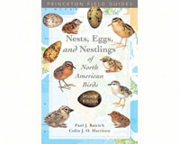 Nests, Eggs, and Nestlings of North American Birds by Paul J. Baicich & Colin J. O. Harrison-PR9780691122953