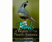 Birds of Western North America by Paul Sterry & Brian E. Small-PR9780691134284