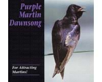 Dawn Song CD Purple Martin Attractors-PMCD