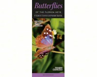 Butterflies of Florida Key by Marc C. Minno-QRP113