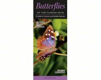 Butterflies of Florida Key-QRP113