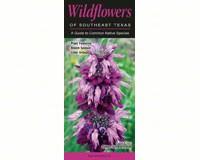 Wildflowers of Southeast Texas by Steven Schwartzman-QRP136