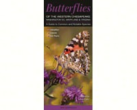 Butterflies of the Western Chesapeake (WA,DC,MD,VA)-QRP148