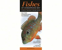 Fishes of the Chesapeake Bay by Craig Springer Diane Rome Peebles & Joseph R. Tomelleri-QRP149