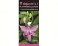 Wildflowers Eastern Chesapeake-QRP150