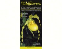 Wildflowers Western Chesapeake-QRP151