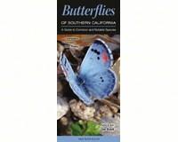 Butterflies of Southern California by Greg. R. Homel-QRP153