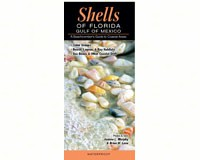 Shells of Florida:Gulf of Mexico by Jeanne L. Murphy and Brian W. Lane-QRP170
