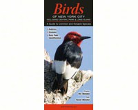 Birds of NYC and Central Park by Randi Minetor and Nic Minetor-QRP182