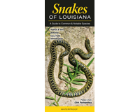 Snakes of Louisiana by Cliff Pustajovsky-QRP195