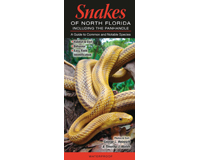 Snakes of Northern Florida by George L. Heinrich and Timothy J. Walsh-QRP199