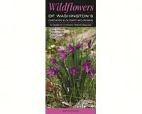 Wildflowers of WA's Cascade Mtns-QRP218