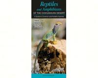 Reptiles & Amphibians of the Chihuahuan Desert  by Randall D. Babb-QRP224