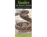 Snakes of South Texas by Clint Pustejovsky-QRP226