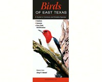 Birds of East Texas-QRP274