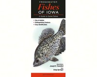 Freshwater Fishes of Iowa by Craig Springer-QRP286