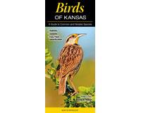 Birds of Kansas by Greg R Homel-QRP316