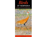 Birds of Nebraska by Greg R Homel-QRP317