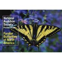 Aud. Familiar Butterflies of NA-RH067972981X