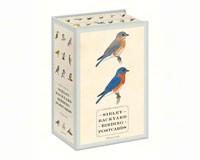 Sibley Backyard Birding Postcards (100 postcards)-RH0770433963