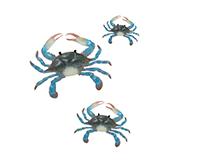 Blue Crab Wall Decor - Set of 3-REGAL05418
