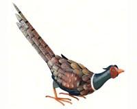 Pheasant Decor Down-REGAL10325