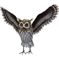 Grey Horned Owl Wings Up-REGAL12450