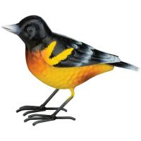 Bird Decor Oriole-REGAL12585