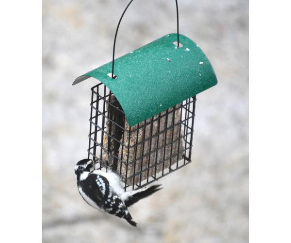 Deluxe Double Suet Cage withGreen Metal Roof SE106