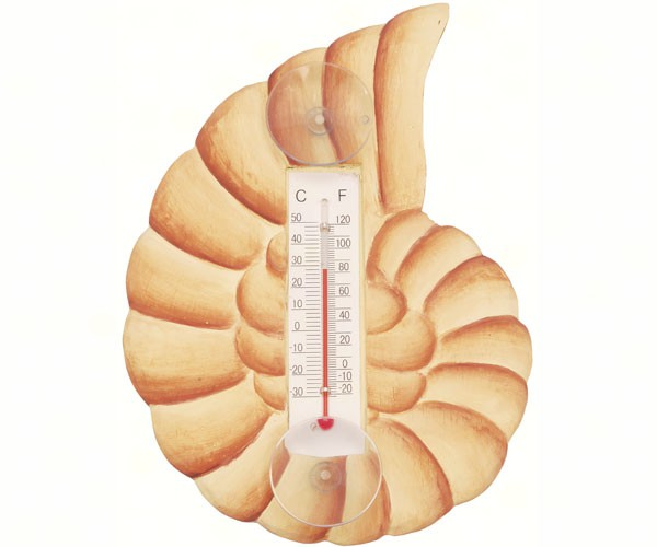 Brown Nautilus Shell Small Window Thermometer