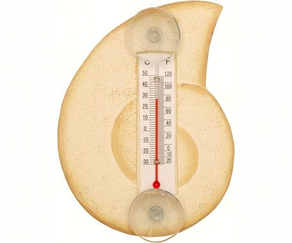 Cream Nautilus Shell Small Window Thermometer