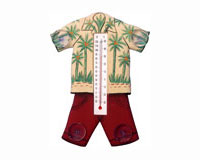 Hawaiian Shirt Small Window Thermometer-SE2178407