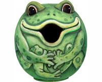 Frog Gord-O Bird House SE3880072