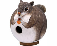 Squirrel Gord-O Bird House SE3880086