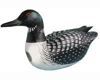 Bird House Loon SE3880088