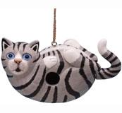 Grey Tabby Cat on Back Bird House SE3880194