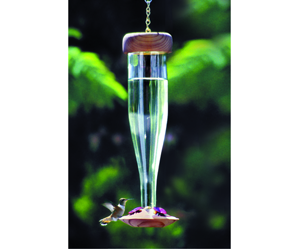 Crystal hummingbird Lantern