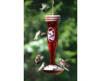 Ruby Etched Hummingbird Lantern SE4058'