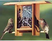 Chickadee Pine Cone Teahouse-SE4151