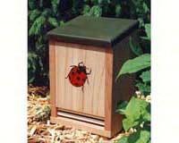 Ladybug House-SE4205