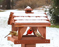 Pavilion Bird Feeder-SE512