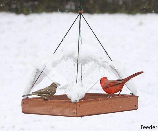Shop Birdfeeders