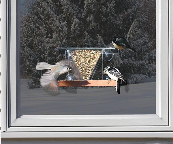 Window Feeder 3 SE537