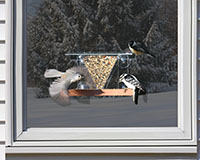 Window Feeder 3 SE537