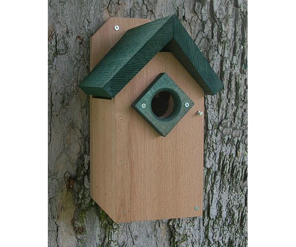 BlueBird House Green Roof SE543