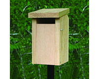 BlueBird House Slot SE544