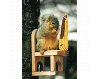 Squirrel Feeder Chair SE547