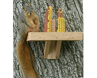 Squirrel Feeder SE548
