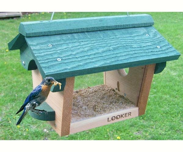 Bluebird Feeder SE557